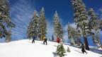 5 Top Distinctive Snow Excursions Near Redding, CA