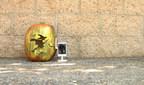 D-Link offers tips for setting up a Candy Thief Pumpkin Camera (Pum-Cam) for a High-Tech Halloween. (PRNewsFoto/D-Link)