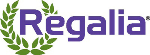 Marrone Bio Innovation's Regalia(R) Biofungicide helps potato, strawberry, and tomato growers improve plant  ...