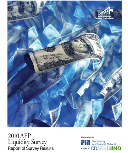 U.S. Corporate Finance Execs Prize Safety and Liquidity