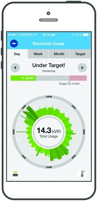 DTE Insight App (PRNewsFoto/DTE Energy)