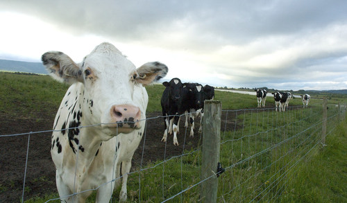 DeLaval Steps up its Commitment to Support Dairy Farmers' Drive for Inclusive and Sustainable Growth in the  ...