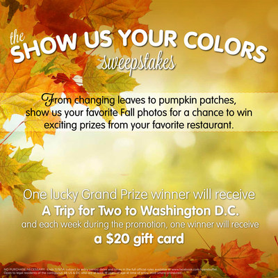 "Ryan's, HomeTown Buffet, and Old Country Buffet are calling on all shutterbugs to snap and share their Fall favorites as part of the ""Show Us Your Colors"" online sweepstakes. Each week during the promotion, one winner from each of the three restaurants will receive a $20 gift card good at any of the 324 family-style restaurants, and all eligible entrants will have a chance to win a grand prize trip for two to our nation's capitol, Washington, D.C. (PRNewsFoto/Ovation Brands)"
