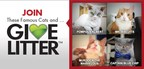 It's time to GiveLitter! Vote daily and help raise 50,000 pounds of litter to donate to shelter cats in need all over the country. It's free and easy! www.givelitter.com
