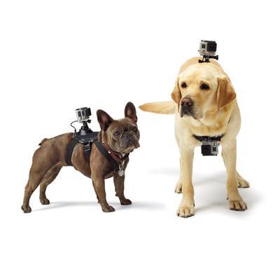 Fetch Dog Mount. (PRNewsFoto/GoPro, Inc.)