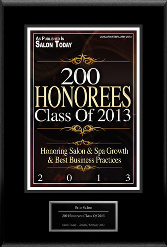 "Brio Salon Inc Selected For ""200 Honorees Class Of 2013"".  (PRNewsFoto/Brio Salon Inc)"