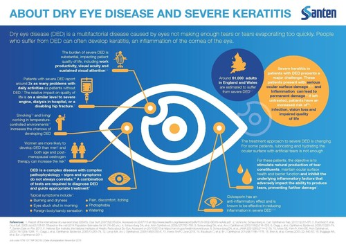 About Dry Eye Disease and Severe Keratitis (PRNewsFoto/Santen UK Limited) (PRNewsFoto/Santen UK Limited)