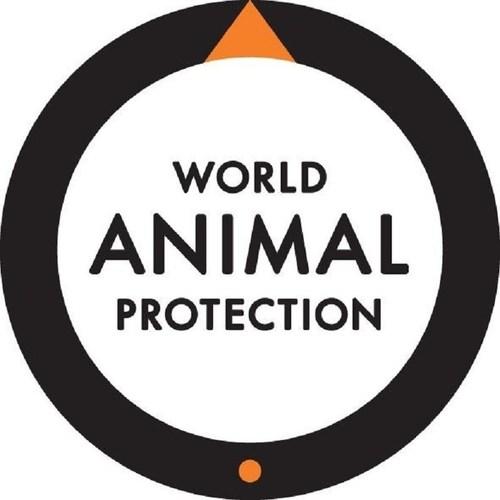 World Animal Protection Logo (PRNewsFoto/World Animal Protection) (PRNewsFoto/World Animal Protection)