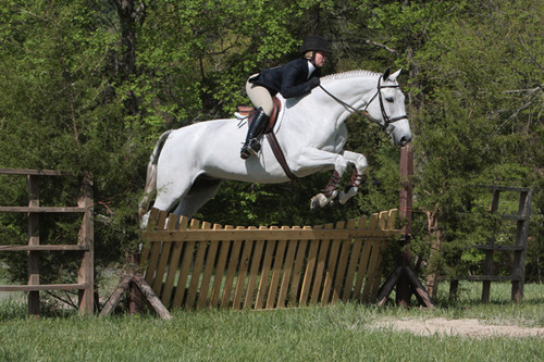 SCAD to Host 2011 ANRC National Intercollegiate Equitation Championship April 15 - 17