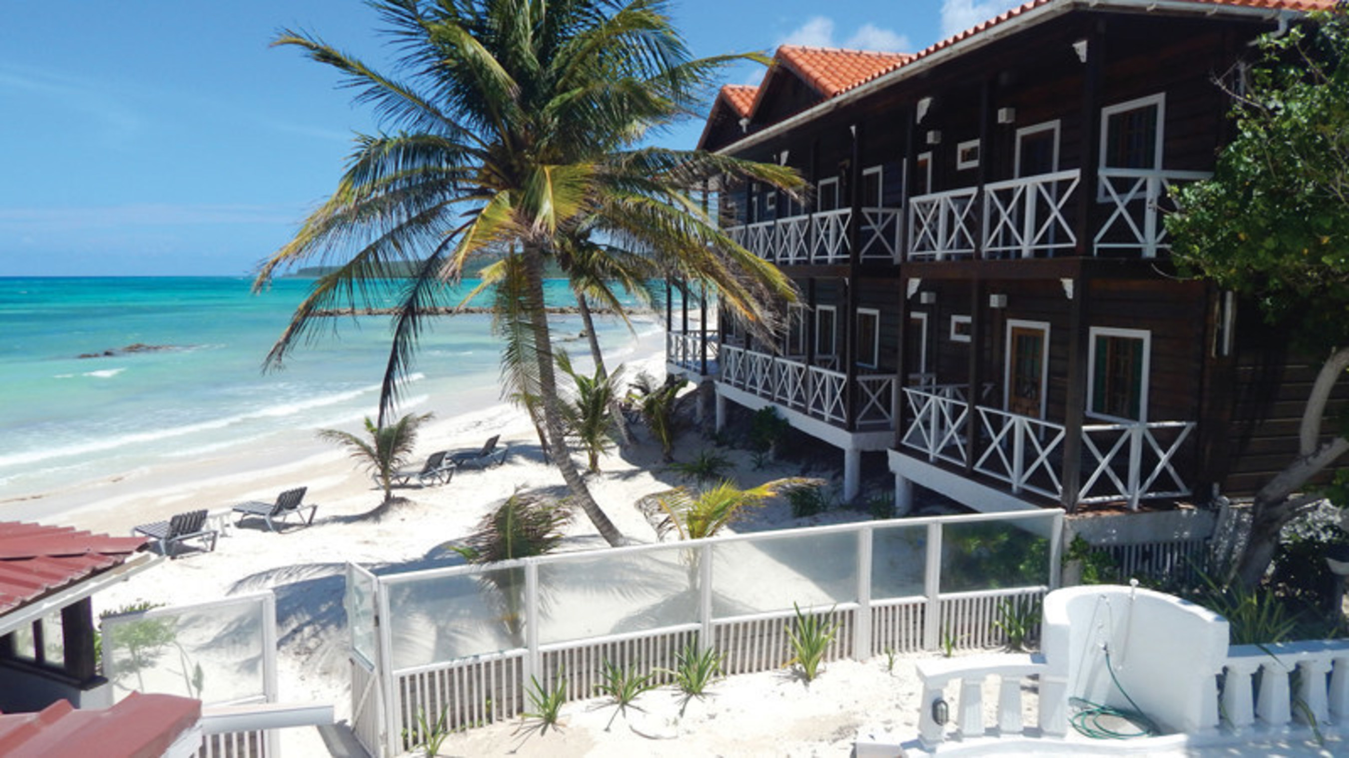 Mangos Jamaica Launches As The Island S Newest Only
