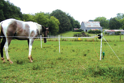 New Portable Electric Paddock from Woodstream Easy to Use