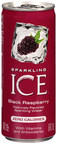 Talking Rain Beverage Company, the makers of SPARKLING ICE(R) beverages, has launched in 8-ounce slim cans from Ball Corporation. Available in convenient 8-count fridge packs, SPARKLING ICE cans are available in four flavors - Black Raspberry, Orange Mango, Kiwi Strawberry and Cherry Limeade.