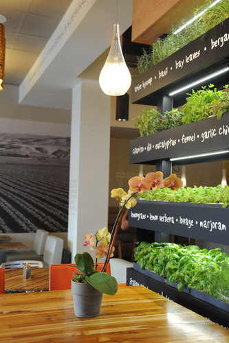 Introducing the iconic LYFE Kitchen Herb Wall. (PRNewsFoto/LYFE Kitchen) (PRNewsFoto/LYFE KITCHEN)