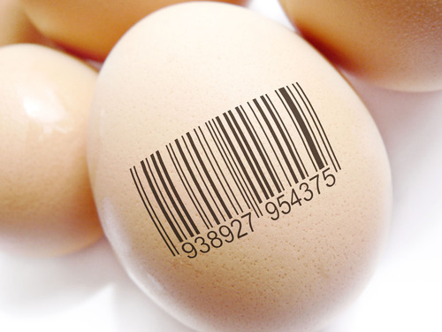 Eggs are not equal. Make sure you buy a brand that protects your family.  (PRNewsFoto/CAT²)