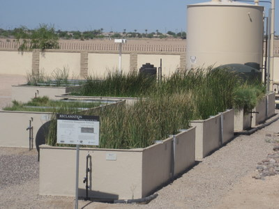 CH2M and Reclamation designed a pilot-scale wetlands facility at the City's Bullard Water Campus (BWC) which revealed that constructed wetlands can effectively reduce contaminants in RO concentrate.