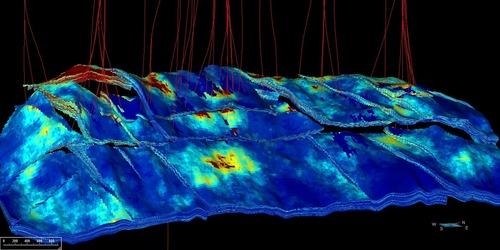 Flow simulation grid, McKee Field, New Zealand (PRNewsFoto/Paradigm)