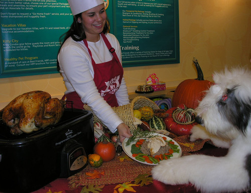 Eloise, the old English sheepdog, was first in line when chef Sarah served up last year's Thanksgiving feast at Best Friends Pet Care in White Plains NY. The staff of all 42 Best Friends locations nationwide (www.bestfriendspetcare.com) will be hosting special holiday feasts for their boarding guests on Thanksgiving Day this year.   -Photo by Best Friends Pet Care.  (PRNewsFoto/Best Friends Pet Care)