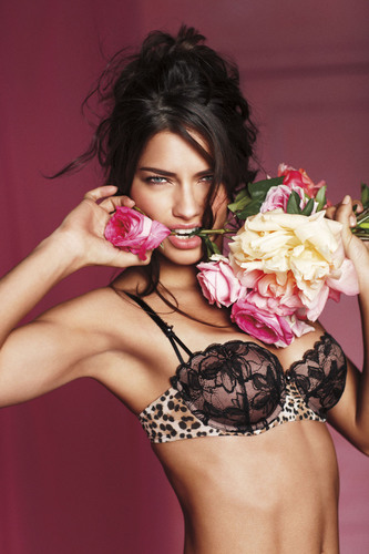 Victoria S Secret Introduces The Love Push Up Collection For