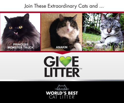 World's Best Cat Litter(TM) has partnered with three extraordinary cats to help them do extraordinary things ...