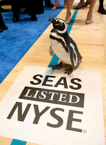 "Penguins on Wall Street: One of SeaWorld's animal ambassadors, ""Penny Penguin,"" visits the NYSE trading floor on SeaWorld Entertainment Inc.'s IPO day. SeaWorld Entertainment, Inc. Orlando, Fla.  (PRNewsFoto/SeaWorld Entertainment, Inc.)"