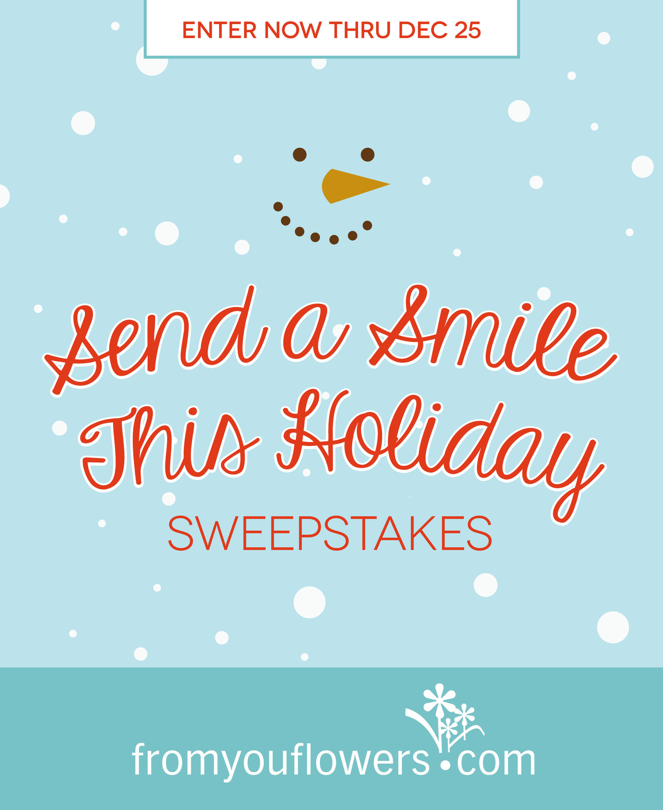 Send a FaceVase Bouquet and FaceTime Home with New iPhones in the Send a Smile This Holiday Sweepstakes Hosted by From You Flowers!