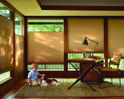 Hunter Douglas Duette(R) Architella(R) honeycomb shades with the LiteRise(R) cordless lifting system. (PRNewsFoto/Hunter Douglas Inc.)