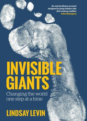 Invisible Giants: changing the world one step at a time by Lindsay Levin