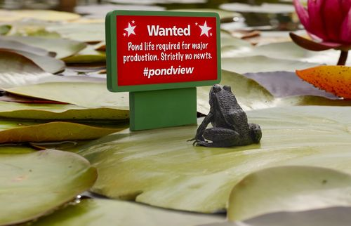 The world's first ever 'Lily Ad', an artificial lily pad created by Freeview to attract pond-talent to star in a new campaign. Photographed on location at RHS Wisley, Surrey. (PRNewsFoto/Freeview)