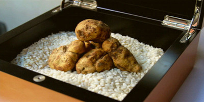 Italian restaurant Le Castagne unveils exclusive one of a kind $26,000 Truffle Dinner featuring some of the rarest ingredients in the world: Italian White Truffles Can Cost Up to $6,000 Per Pound.  (PRNewsFoto/Le Castagne)