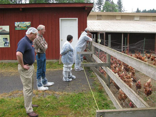 Free Range - Min of 2 sq. ft/ hens, outdoors (weather permitting).  (PRNewsFoto/Humane Farm Animal Care)