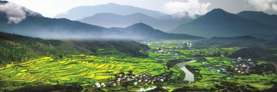 """The Terraced Rapeseed Flower Hills of Jiangling, Wuyuan is hailed as one of the four """"seas of flowers"""" in China"""