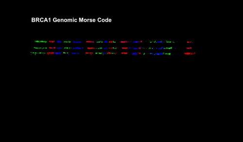 Genomic Vision erweitert seinen Patentbestand mit dem Genomic Morse Code
