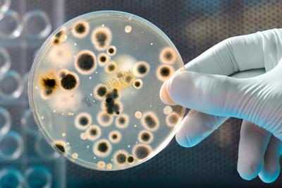 UC San Diego Extension to Present Microbial Fermentation Workshop