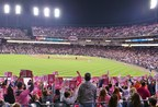 Detroit Tigers Pink Out the Park hits a home run