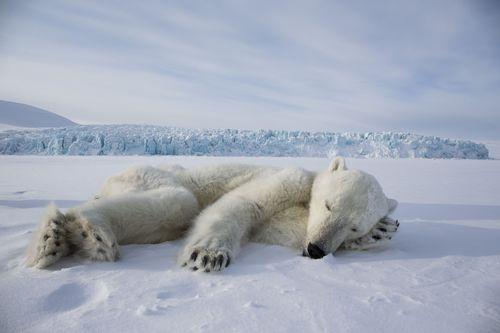© Brutus Östling, Canon Ambassador (PRNewsFoto/Canon Europe)