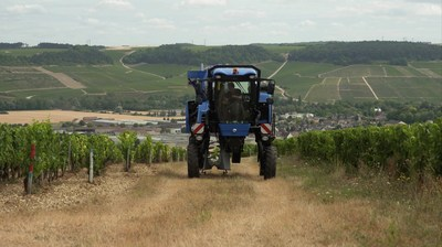A grape harvester, from CNH Industrial brand New Holland Agriculture, operating in Chablis, France. New Holland Agriculture is the global leader in self-propelled grape harvesting machines.