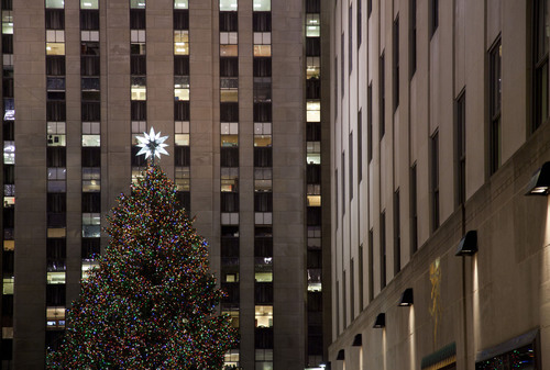 The 2010 Rockefeller Center Christmas Tree Will Help Build a Habitat for Humanity Home in Newburgh,