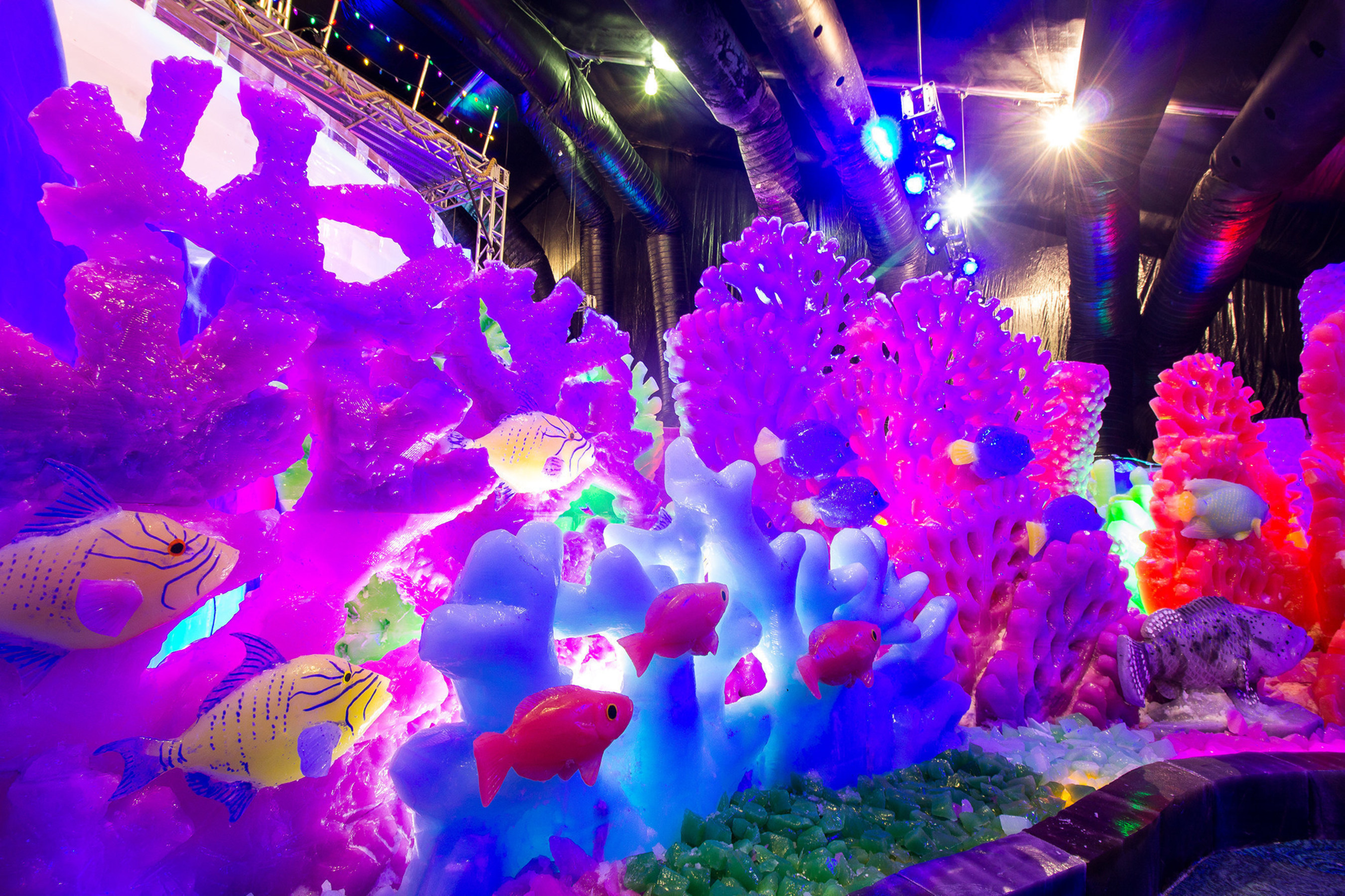 Moody Gardens offers visitors a new theme with its ICE LAND: Ice Sculptures, A Caribbean Christmas when it opens Saturday, November 12.