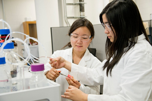 Students work in the Shimadzu Center for Advanced Analytical Chemistry, one of three centers that make up the ...