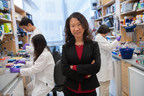 Hao Wu, PhD, of the Program in Cellular and Molecular Medicine (PCMM) at Boston Children's Hospital, has been elected to the National Academy of Sciences (NAS).