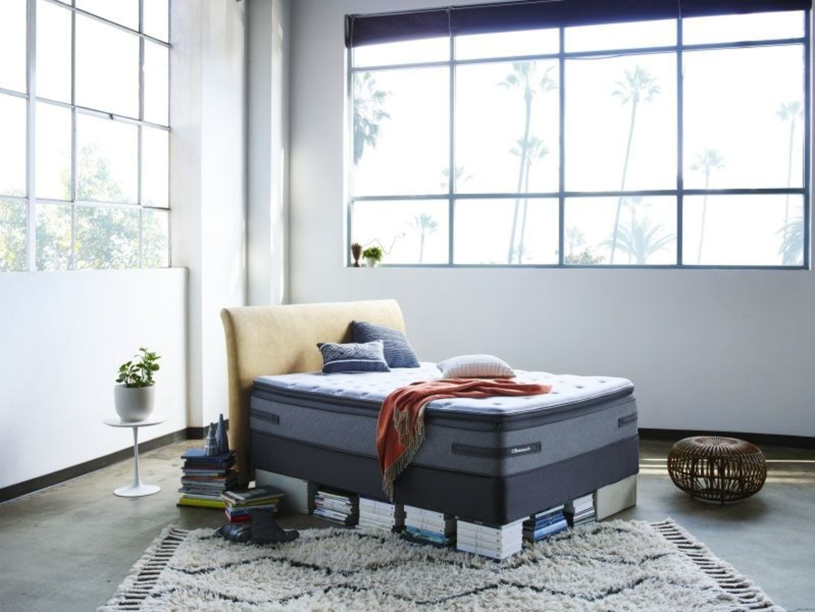 Sealy Posturepedic debuts new product line for 2015 at Las Vegas Market, pays tribute to back support roots for 65th anniversary.