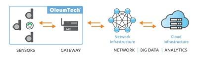 OleumTech Wireless Sensor Network for IIoT Deployment