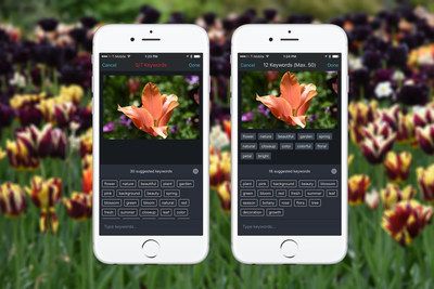 Shutterstock Releases Advanced Keyword Suggestion Tool for iPhone using its Computer Vision Technology
