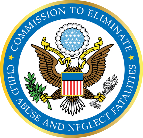 Commission to Eliminate Child Abuse and Neglect Fatalities Holds Public Meeting in Detroit,