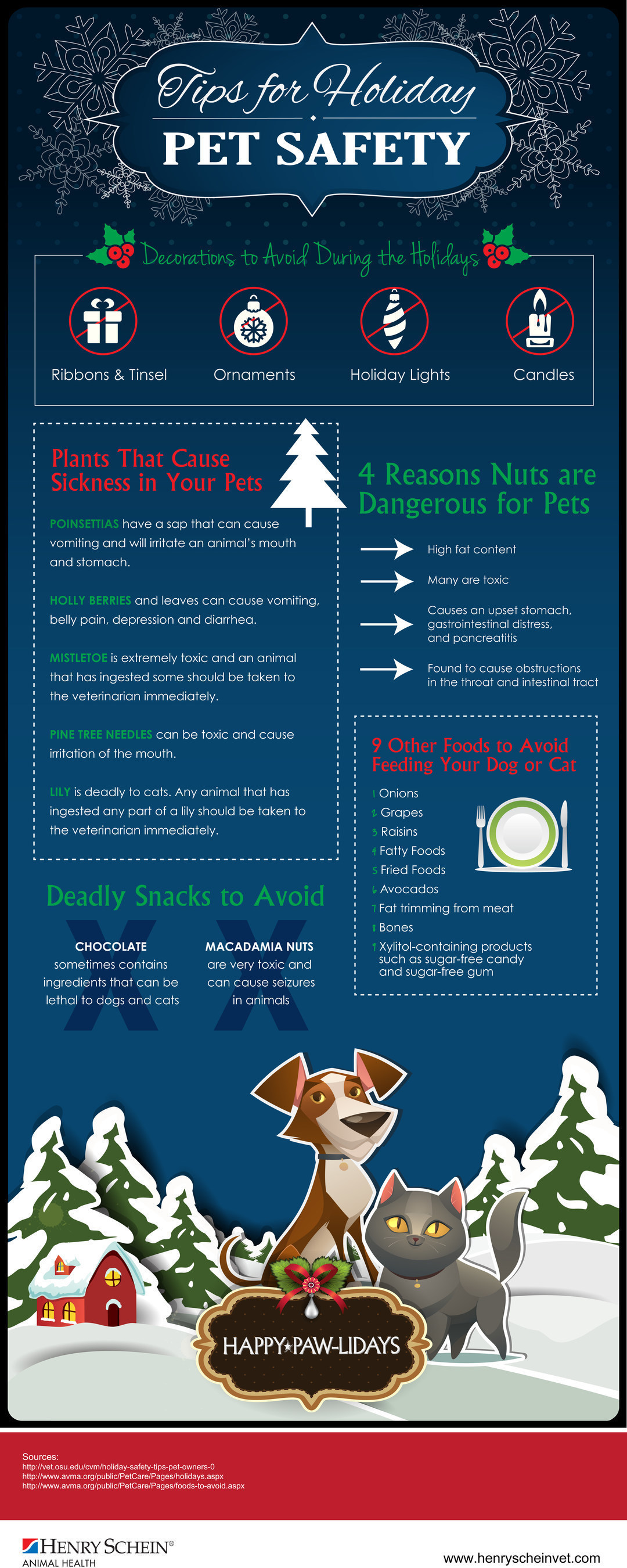 Henry Schein's Tips for Holiday Pet Safety