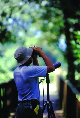Tourist viewing the scenary from Pico Bonito National Park. Photo Credit: Paul Martinez (PRNewsFoto/CANATURH)