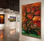 """""""INFINITY TREE,"""" THE LATEST WORK OF FINE ART PHOTOGRAPHER PETER LIK TO BE UNVEILED THIS WEEKEND AT LIK GALLERIES ACROSS THE COUNTRY"""