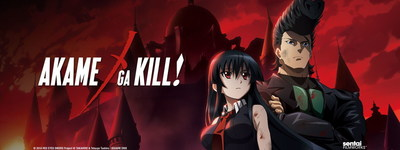 Akame ga Kill! follows an elite team of assassins known as Night Raid, as they take on the brutal tyranny of a corrupt empire.