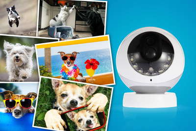 Kidde's RemoteLync Monitor and Camera are designed to offer smart, simple security, by alerting homeowners to emergencies while away from home. For dog owners that means while these products monitor for smoke and carbon monoxide (CO) incidents or motion, their pets are now free to forego their guarding responsibilities and go back to being a dog. Now, Kidde is asking owners to enter a contest by sharing a photo of what their dog would do with its spare time and include the hashtag: #LetYourDogBeADog.
