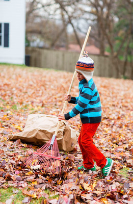 Tap into your inner child and pile up the leaves while prepping for fall lawn care and maintenance this season. Use leaves as ground cover for garden beds to insulate perennials during cold winter months or bring leaves indoors for colorful craft projects, such as embellishing a wreath or creating a fun floral arrangement.  (PRNewsFoto/Lowe's)